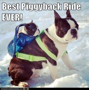 best ride ever